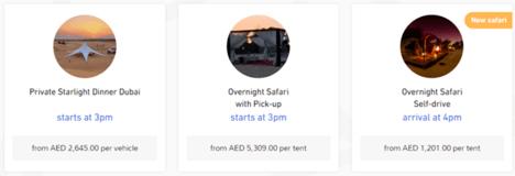 Arabian Adventures Private Safari