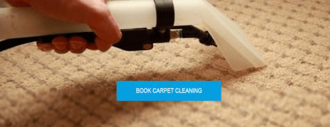 CleaningCompany Carpet Cleaning Service
