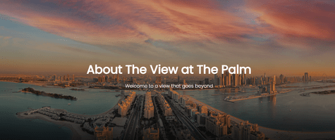 The View Palm Offers